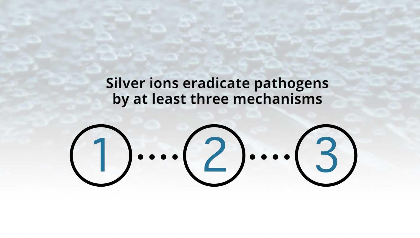 3-mechanisms